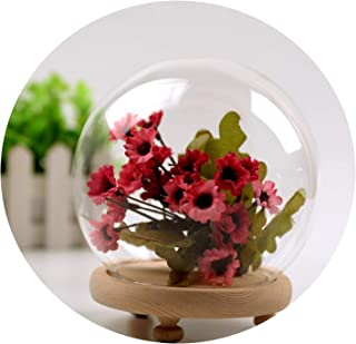 Paramise-vases Vintage Glass Globe Desktop Plant Bonsai Dry Flower Display Dome Cloche Bell Jar Decoration Vase with Wooden Base Home Decor,135MM