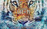 Firefly Arts Life of Pi 96cm x 60cm 38Zoll x 24Zoll Poster