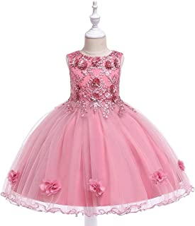 BCSHF Vestido de Princesa de Las niñas Vestido Vestido de Novia de Falda de Las Muchachas Hada de la Flor anfitrión Vestid...