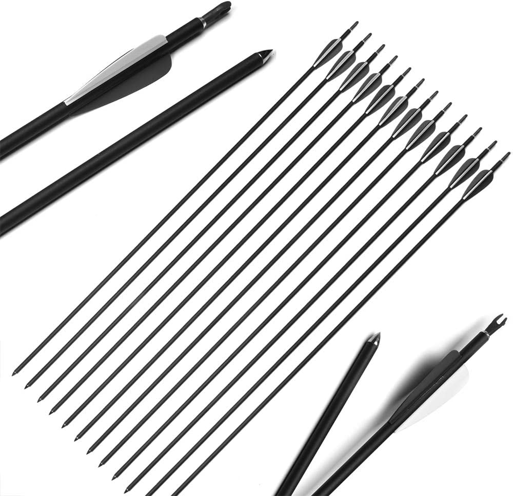 """ANTISR 30"""" Carbon Arrows OD.275 with Interpolated Tips and Anti-Nail Nock for Compound & Recurve Bow(Pack of 12,Black) : Sports & Outdoors"""