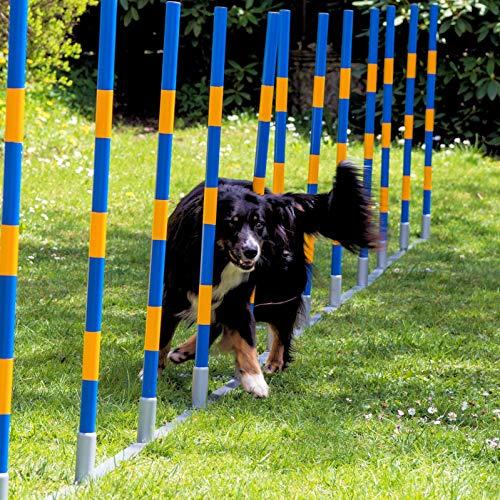 Procyon Hunde Agility Profi-Slalom Set Doggy