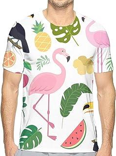 Amazon.es: guitarra flamenca - Camisetas / Camisetas, polos y ...