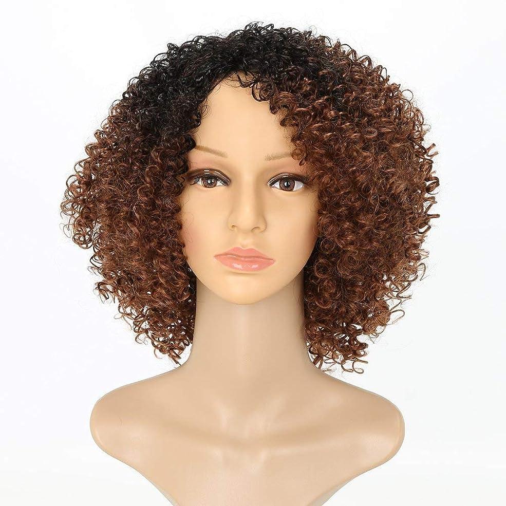 木ユーモラスセールスマンかつらショートカーリーかつら茶色オンブレ女性女の子ふわふわ波状 100% 耐熱繊維合成