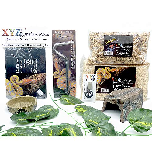XYZReptiles Ball Python Snake Habitat 10 Gallon Terrarium Starter Kit