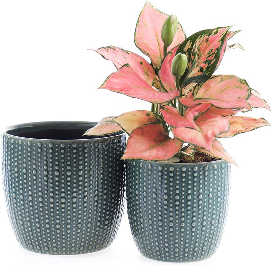 SRXing Ceramic Flower Pot Garden Planters Topics on TV Popular brand in the world 2 of Set 5.5