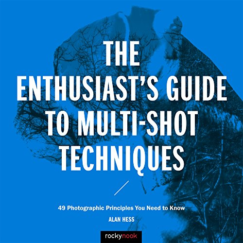 Price comparison product image The Enthusiast's Guide to Multi-Shot Techniques: 49 Photographic Principles You Need to Know