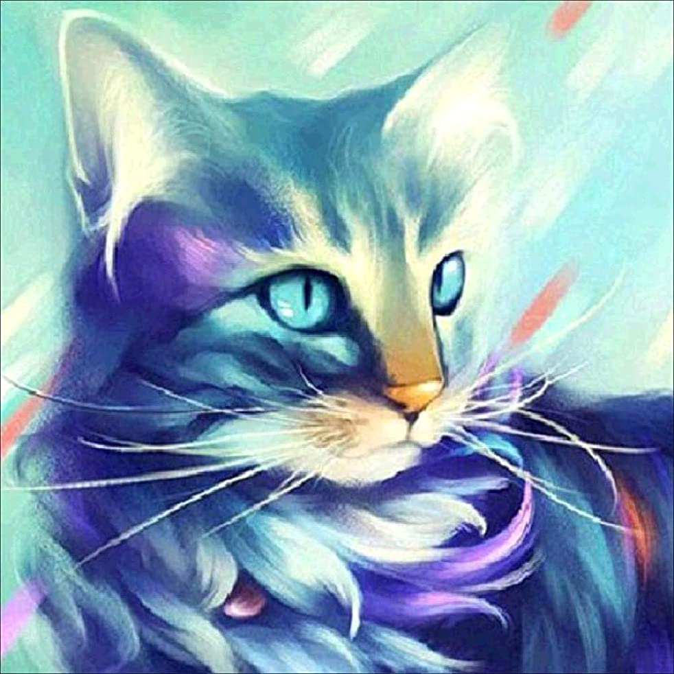 Crystal Cat Diamond Painting Set - PigBoss 5D Full Diamond Embroidery Cross Stitch Kit - Diamond Dots Kits Arts Crafts Home Decor Gift for Adult (11.8 x 11.8 inches)