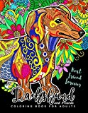 Dachshund colouring book