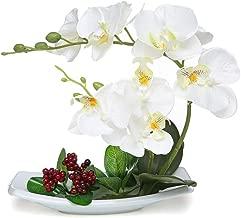 VIIVL Artificial Flowers 7 Head phalaenopsis Potted Landscape Imitation Porcelain Flowerpot Fake Flowers Decoration Indoor (White vase)