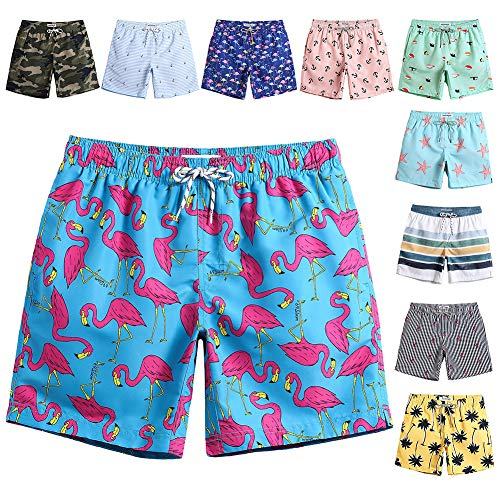 MaaMgic Mens Quick Dry Flamingo Swim Trunks With Mesh Lining Swimwear Bathing Suits, New-qma245-flamingo, Large