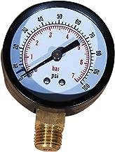 Daveyspa Pool and Spa Filter Pressure Gauge 0-100 PSI 1/4
