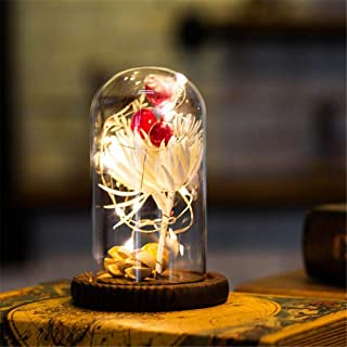 m·kvfa Mini Led Light Enchanted Forever Box Flower Glass Cover Decoration Ornament USB Socket Party Home Living Room Bar Decor