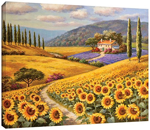 Sung Kim ''Tuscany Sunflowers'' Gallery Wrapped Floater-framed Canvas, 36X48