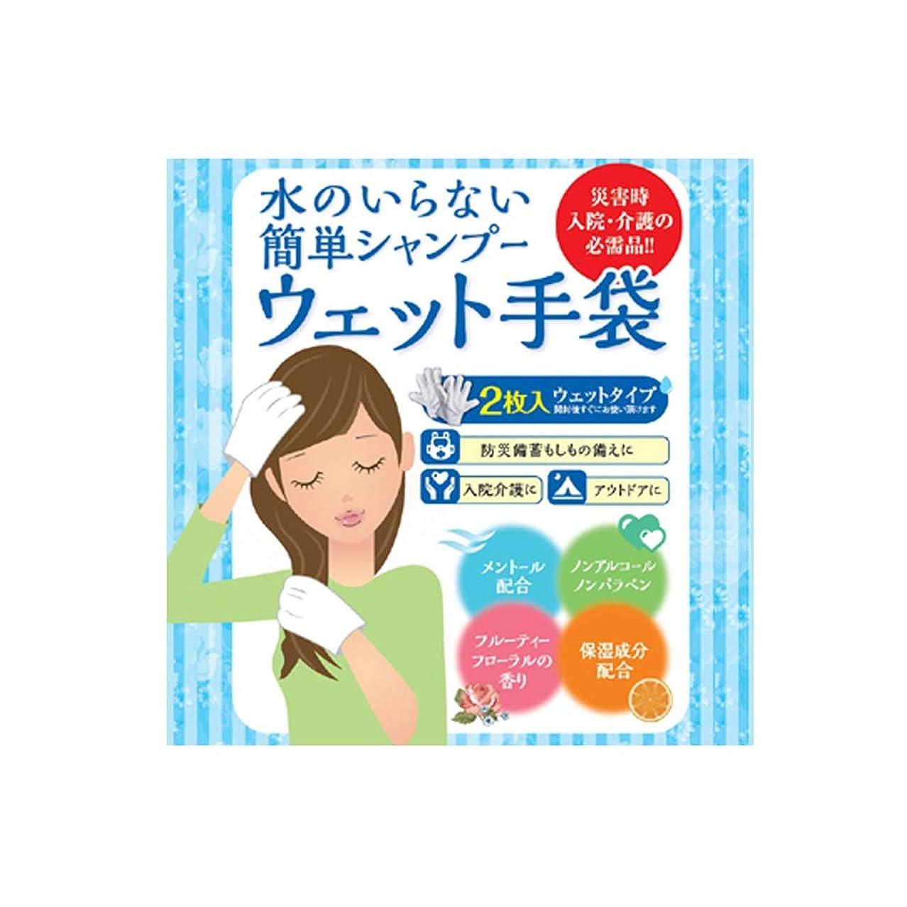 スプーン盲目スーパーマーケット水のいらない泡なしシャンプー ウェット手袋(2枚入)