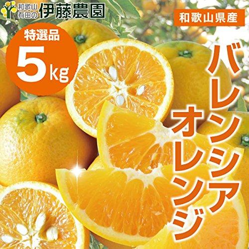 バレンシア オレンジ 箱詰め 送料無料 みかん 蜜柑 (特選5kg)
