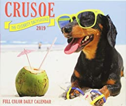 Crusoe the Celebrity Dachshund 2019 Box Calendar (Dog Breed Calendar)