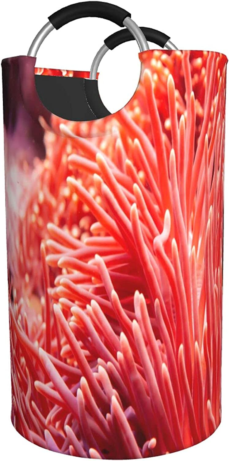 ZXZNC 82L Large Atlanta Mall Laundry 2021 Basket Red Reefs in Ocean Foldable Coral