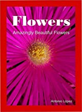 Flowers. Amazingly Beautiful Flowers.