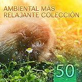 50 Ambiental Más Relajante Colección: Antiestres Música y Sonidos de la Naturaleza para Relajación, Dormir, Meditación, Pensamento Positivo, Spa, Masaje y Yoga