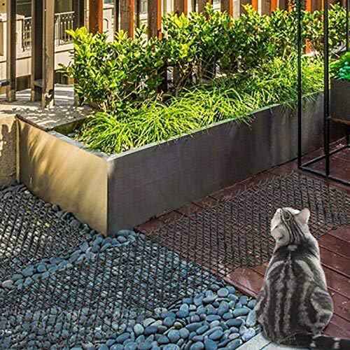 Alextry Abilieauty Katzenschreck Für Garten Attrezzo per diserbo da giardinaggio manuale Forca da diserbo Mini manico in Legno in Acciaio inossidabile