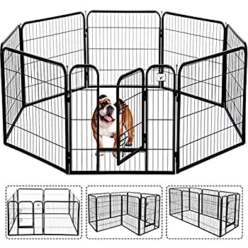Best cheap dog fence options Reviews