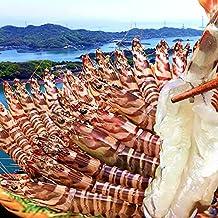 車えび 特大2L【活〆冷凍】車海老 1kg(24~28尾)熊本県天草産 維和島 車エビ 生 急速冷凍 養殖場直送 刺身 新鮮 クルマエビ