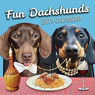 Fun Dachshunds 2019 Dachshund Wall Calendar (2018)