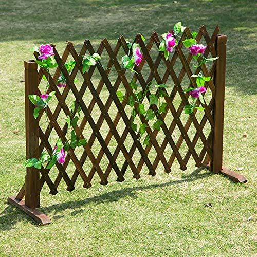 Gartenzaun, expandierender Trellis Privatsphäre Zaunbildschirm, hölzerne freistehende Gitterplatten für Kletterpflanzen mit diagonaler Unterstützung, für Innen- / Innenausstattung (Size : 63cm)