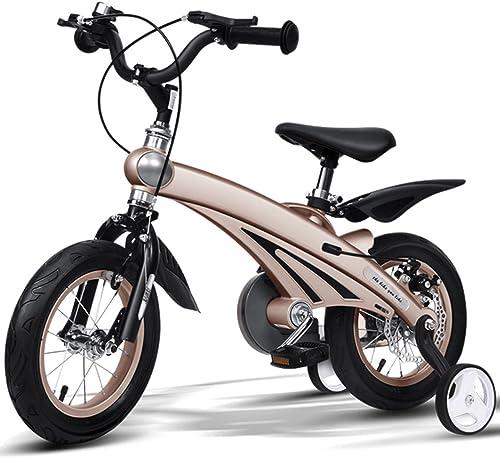 Kinderfürr r Magnesiumlegierung   fürrad geeignet für Kinder im Alter von 2 bis 11-12 14 16 Zoll Dreirad (Farbe   Champagne, Größe   16inch)