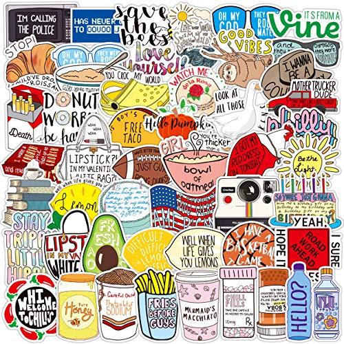 Fresh Vine-Aufkleber-Set, 102 Stück, lustige Meme-Aufkleber für Jugendliche und Erwachsene, Vinyl-Aufkleber für Wasserflaschen, MacBook, Laptop, Handyhüllen, 102 Stück