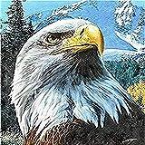 clockfc Pintura por números DIY Set de Pintura al óleo para niños Adultos Principiantes - Dibujo de águila con Pincel Decoraciones navideñas Regalos 40x50cm (con Marco)