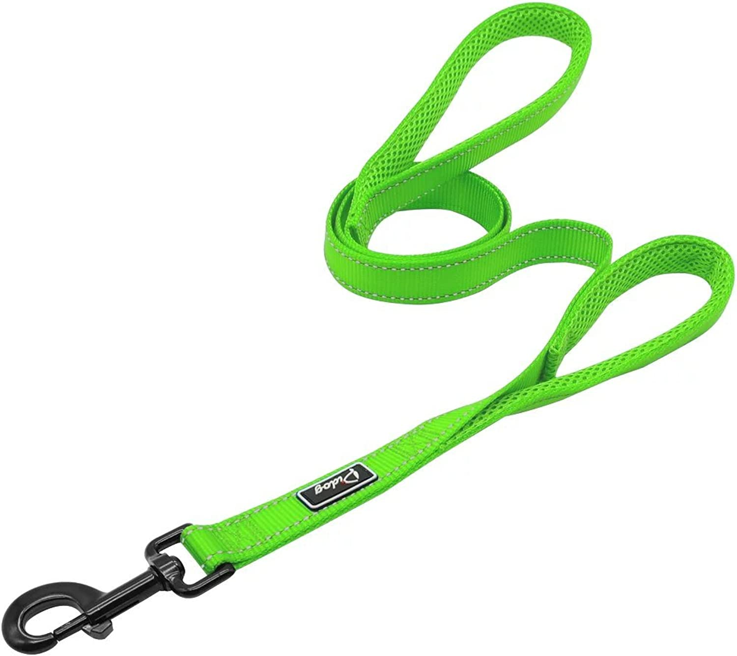 Didog 4 Feet No Pull Nylon Webbing Reflective Dog Leash,Training Dog Leash in Traffic,Green