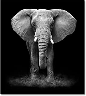 Large Size Modern Animal Painting Black and White Elephant Canvas Wall Art Print for Living Room Decor (Framed 30x40inch)