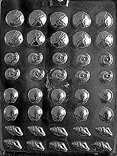 Tiny Shells Chocolate Mold - N033 - Includes Melting & Chocolate Molding Instructions