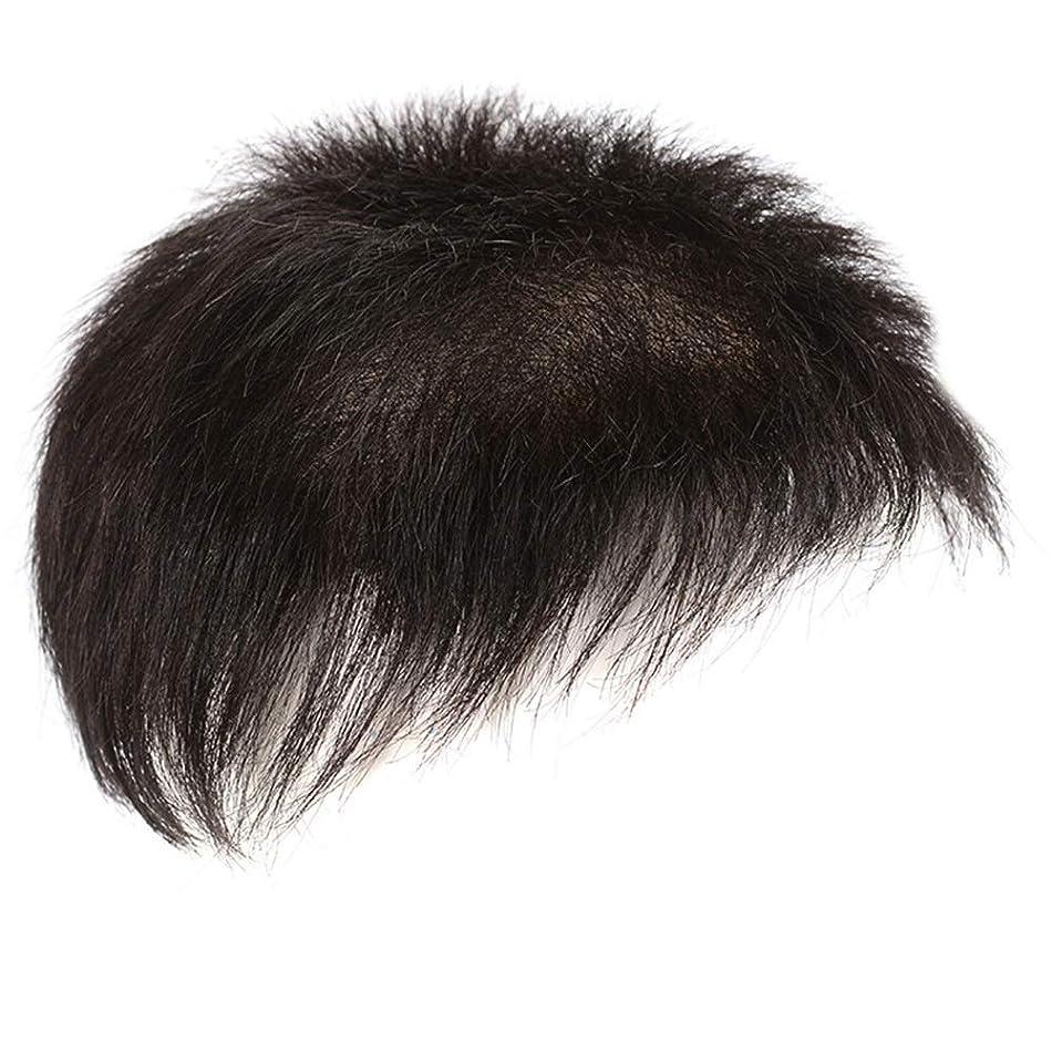 悩み確執珍味HOHYLLYA 男のための本物の毛髪のかつらのフルハンド織ヘアクリップ脱毛かつらパーティーかつら (色 : A, サイズ : [18X20])