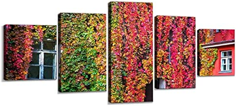 VEXRLU parthenocissus with red and Yellow Autumn Leaves Colorful autumns 5 Pcs Premium Canvas Art Wall Hanging Paintings Modern Abstract Decoration Artworks Gift Unique Designed with Wooden Frame