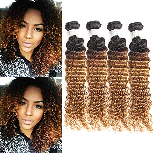 Ombre Deep Wave Virgin Hair Weave 4 Bundles Wet and Wavy Brazilian Deep Curly Hair Bundles Ombre Human Hair Extensions Two Tone Color T1B/30(16 16 16 16)