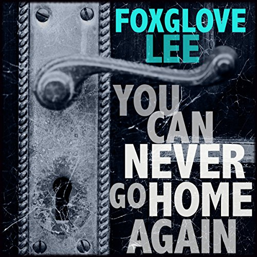 You Can Never Go Home Again audiobook cover art