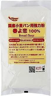 パイオニア企画 国産小麦パン用強力粉 春よ恋100% 800g