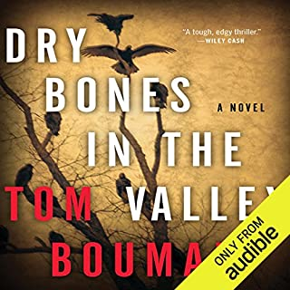 Dry Bones in the Valley audiobook cover art