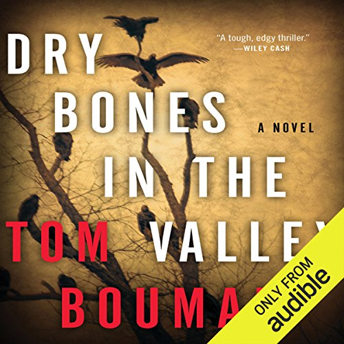 Dry Bones in the Valley cover art
