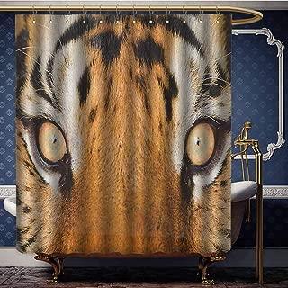 Jiahong Pan Safari,Modern Shower Curtain Close-up Tiger Eyes Hunter Look Feline Camouflage Coat Animal with Shady Colors for Bathroom Orange Black W96 xL72