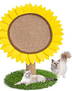 Best cat condo game cat list Reviews