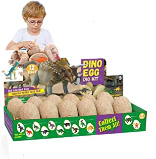 Dinosaur Eggs Dig Kit 12 Pack Discover 12 Different Dinos Archaeology and Paleontology Toy Dino Egg Excavation Kit STEM To...