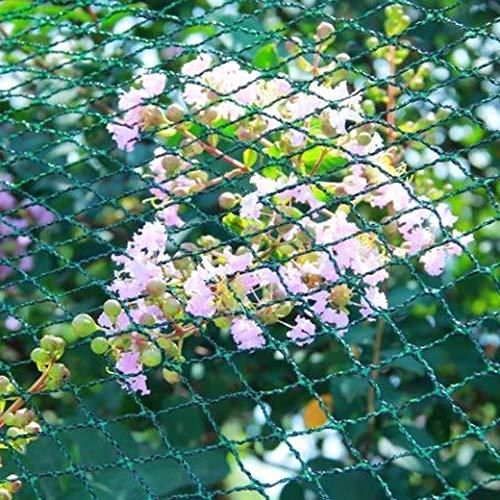 2 x Vogelschutznetz 5 X 2 Meter Maschen 10 x 10mm Schutz Netz Schädling Vogel
