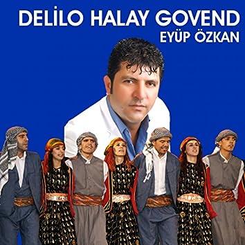 Delilo Halay Govend