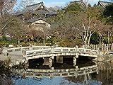 Kyoto, Japan - Nanzen - Maruyama - Chion part 5