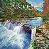 Arkansas Wild & Scenic 2021 7 x 7 Inch Monthly Mini Wall Calendar, USA United States of America Southeast State Nature