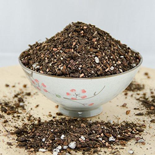 6 Quarts Special Blend Shohin Bonsai Tree Soil - with Mycorrhizae, Lava & Sand