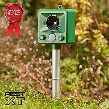 Pest XT Répulsif de Chat Activé par Capteur de Mouvement à Ultrasons et Alimenté par Batterie - Le Répulsif Animal/Faune, Dissuade Les Nuisibles des Jardins (Un Paquet)